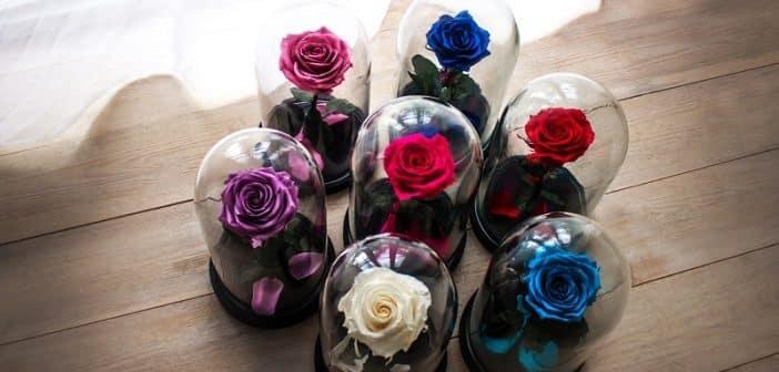 Quels sont les avantages d'une rose éternelle
