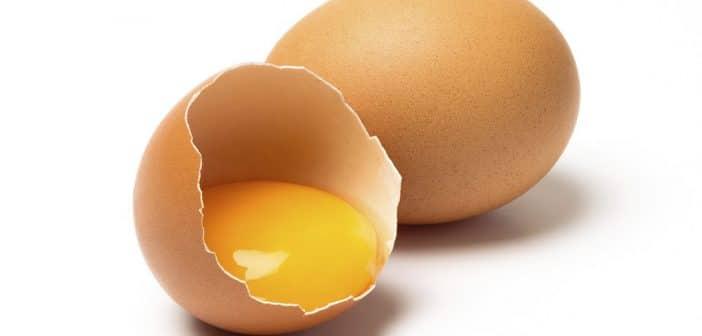 meilleurs œufs
