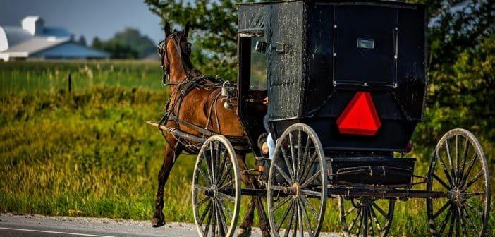 Voyage dans le passé : bienvenue chez les Amish !